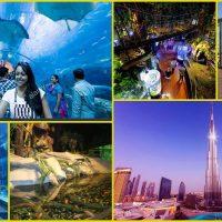 BURJ KHALIFA + DUBAI AQUARIUM + UNDER WATER ZOO 180 whatsapp 0552337784
