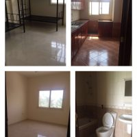 Flat shares / Bed space available for ladies in Al Ain