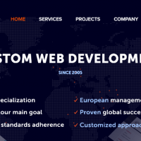 GO-Gulf Custom Website Development Firm