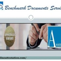 Document legalization services for UAE