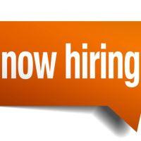 Auto Electrician – job hiring
