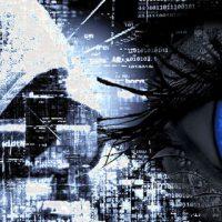 Netmate Information Technology