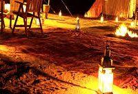 D FOR DESERT SAFARI